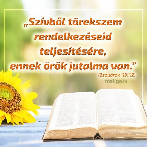 """""""Szívből törekszem rendelkezéseid teljesítésére, ennek örök jutalma van."""" (Zsoltárok 119:112)"""