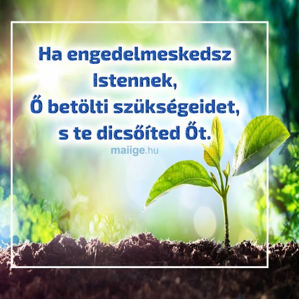 Ha engedelmeskedsz Istennek, Ő betölti szükségeidet, s te dicsőíted Őt.