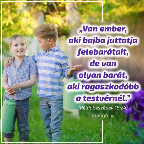 """""""Van ember, aki bajba juttatja felebarátait, de van olyan barát, aki ragaszkodóbb a testvérnél."""" (Példabeszédek 18:24)"""