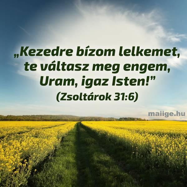 """""""Kezedre bízom lelkemet, te váltasz meg engem, Uram, igaz Isten!"""" (Zsoltárok 31:6)"""