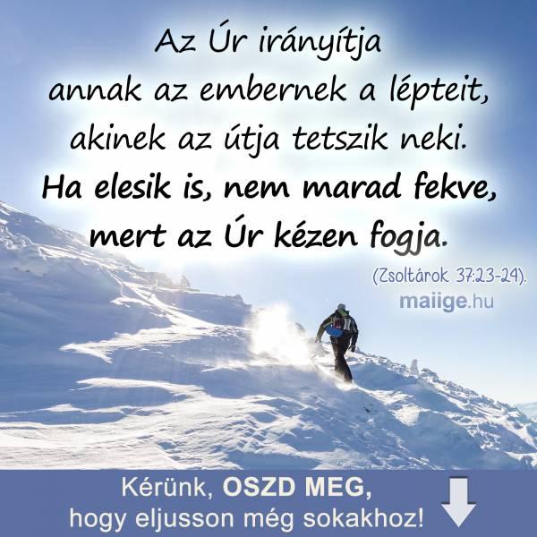 """""""Az Úr irányítja annak az embernek a lépteit, akinek az útja tetszik neki. Ha elesik is, nem marad fekve, mert az Úr kézen fogja."""" (Zsoltárok 37:23-24)."""