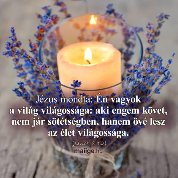 Jézus mondta: Én vagyok a világ világossága: aki engem követ, nem jár sötétségben, hanem övé lesz az élet világossága. (János 8:12)