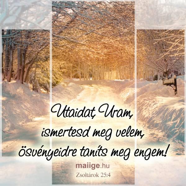 """""""Utaidat, Uram, ismertesd meg velem, ösvényeidre taníts meg engem!"""" Zsoltárok 25:4"""