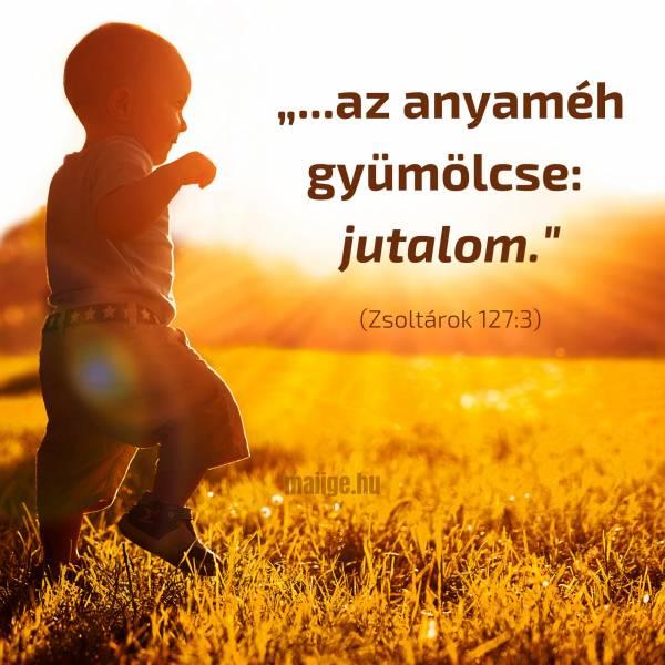 """""""""""...az anyaméh gyümölcse: jutalom."""""""" (Zsoltárok 127:3)"""""""
