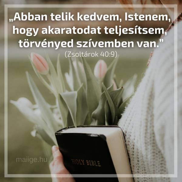 """""""Abban telik kedvem, Istenem, hogy akaratodat teljesítsem, törvényed szívemben van."""" (Zsoltárok 40:9)"""