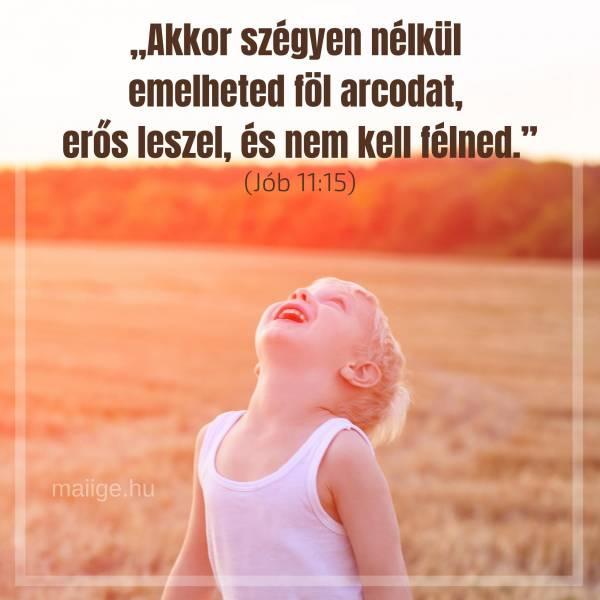 """""""Akkor szégyen nélkül emelheted föl arcodat, erős leszel, és nem kell félned."""" (Jób 11:15)"""